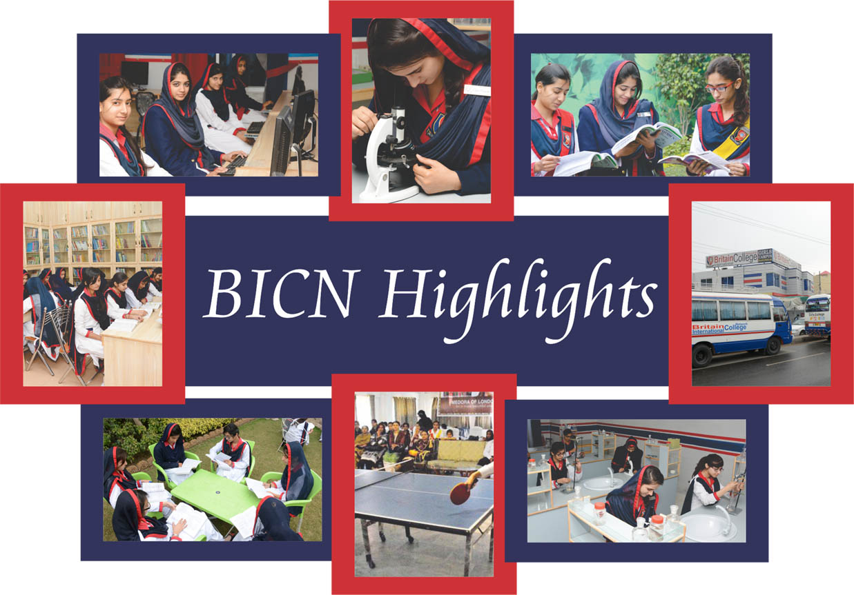 BICN Highlights copy